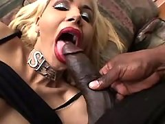 TS sucks black dick n gets blowjob