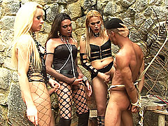 Brutal ts domination and humiliation